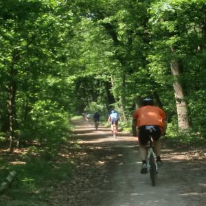 teamuitje-den-bosch-tochten-en-tours-mountainbike